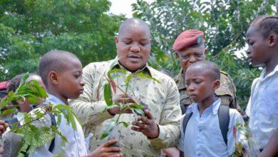 Photo of Restauration du couvert forestier en RDC et financement des projets de protection de l'environnement : Claude NYAMUGABO fait adopter 2 importants Dossiers en Conseil des Ministres
