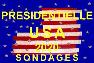 Photo of Présidentielle USA 2020 : près de 14 points d'avance pour Biden à plus de 53,5% sur Trump le 30 août 2020